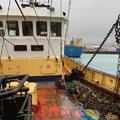 Beam Trawler/Scalloper - picture 3